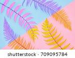 fern fashion. tropical leaf.... | Shutterstock . vector #709095784