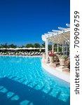 pool in the garden | Shutterstock . vector #709096759