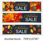 abstract  illustration autumn... | Shutterstock . vector #709113787