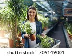 female shopper buying plants... | Shutterstock . vector #709149001