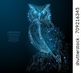 owl isolated from low poly... | Shutterstock .eps vector #709216345