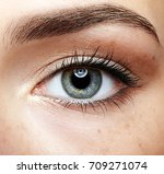 closeup macro portrait of... | Shutterstock . vector #709271074