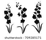 vector silhouette flowers ... | Shutterstock .eps vector #709285171