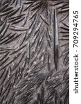 Small photo of Morocco Black Fossil black marble , Orthoceras Fossil Rock Plate Devonian Age- Morocco ,Africa
