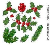 set of fir tree and mistletoe...   Shutterstock .eps vector #709368517