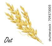 oat ears. hand drawn realistic... | Shutterstock .eps vector #709373005