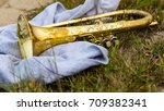 Small photo of This is all one needs for the evening a sweatshirt and their Flugelhorn