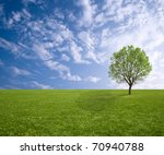 Alone Tree On Grass Field With...