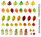 set with autumn leaves  vector... | Shutterstock .eps vector #709409521