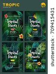 set of bright tropical... | Shutterstock .eps vector #709415431