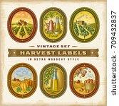 vintage colorful harvest labels ... | Shutterstock .eps vector #709432837