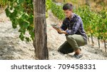 a man in a vineyard with his... | Shutterstock . vector #709458331
