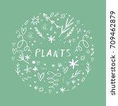 vector hand drawn plants set.... | Shutterstock .eps vector #709462879