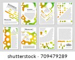 abstract vector layout... | Shutterstock .eps vector #709479289