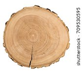 cross section of ash tree trunk ... | Shutterstock . vector #709530595