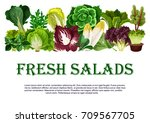 salads and leafy vegetables... | Shutterstock .eps vector #709567705