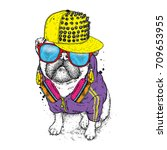 beautiful pug in a jacket  a...   Shutterstock .eps vector #709653955