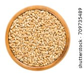 Small photo of Common wheat in wooden bowl. Bread wheat. Crop, cereal grain and staple food. Seeds of Triticum aestivum. Isolated macro food photo close up from above on white background.