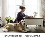 woman petting golden retriever... | Shutterstock . vector #709805965