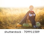 happy child boy dressed as a...   Shutterstock . vector #709911589