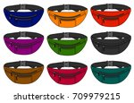 illustration of fanny pack ... | Shutterstock .eps vector #709979215