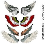 hand drawn wing vector set... | Shutterstock .eps vector #709979329