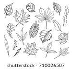 set of hand drawn leaves....   Shutterstock .eps vector #710026507