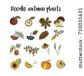 handdrawn unique autumn icons....   Shutterstock .eps vector #710031631