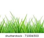 material of grass | Shutterstock . vector #71006503