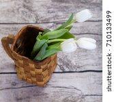 Three White Tulips In Birch...