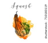 squash. hand drawn vector... | Shutterstock .eps vector #710183119