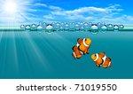 Tropical Reef Fish   Clownfish.