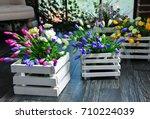 beautiful composition of summer ...   Shutterstock . vector #710224039