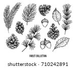 hand drawn vector illustrations ... | Shutterstock .eps vector #710242891
