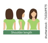 hair length for haircuts and... | Shutterstock .eps vector #710269975