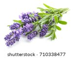 Stock photo lavender flowers bundle on a white background 710338477