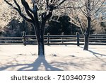 winter landscape with hoarfrost ...   Shutterstock . vector #710340739