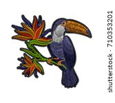 embroidery toucan with tropical ... | Shutterstock .eps vector #710353201