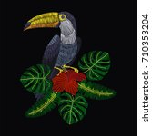 embroidery toucan with tropical ... | Shutterstock .eps vector #710353204