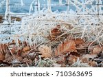 Field Scene Of Frozen Grass An...