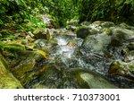 beautiful creek flowing inside...   Shutterstock . vector #710373001