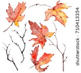 watercolor branches set. floral ... | Shutterstock . vector #710413354