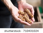 kopi luwak or civet coffee ...   Shutterstock . vector #710431024