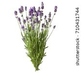 Small photo of A sheaf of fresh lavender sprigs with violet flowers isolated on a white background. Design element for product label, catalog print, web use.