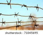 barbed wires against blue sky. | Shutterstock . vector #71045695