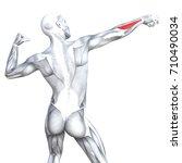 conceptual 3d illustration back ... | Shutterstock . vector #710490034