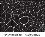 vector stone wall illustration... | Shutterstock .eps vector #710505829