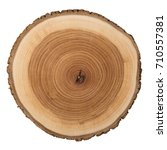 cross section of tree trunk... | Shutterstock . vector #710557381