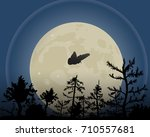 The Night Sky Vector...