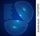 wireframe mesh hemisphere shell.... | Shutterstock .eps vector #710570995